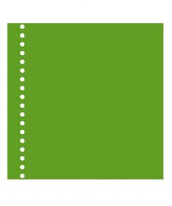 23 Rings Photo Mounting Board, 20 sheets, 270g/m_, lime | 4250053650141 | 353073