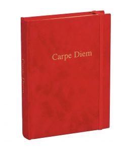 Diary 'Carpe Diem', plain, velvet cover with gold embossing and gilding | 4004117517525 | 356152